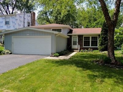 Glen Ellyn Single Family Home New: 112 Kenilworth Avenue