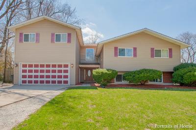 Lombard Single Family Home New: 21w139 Flamingo Lane