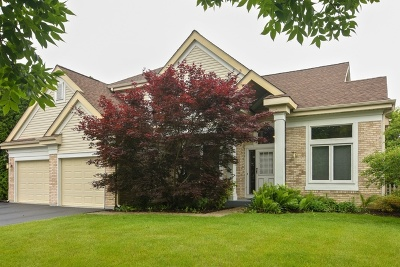Lake Zurich Single Family Home For Sale: 1237 Eric Lane