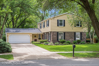 Naperville Single Family Home New: 6 Pima Court