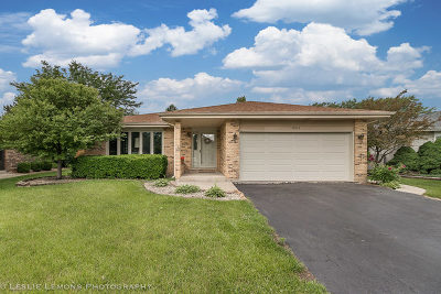 Orland Hills Single Family Home New: 17012 92nd Avenue
