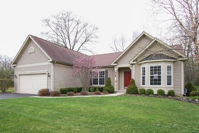 Fox Lake Single Family Home For Sale: 998 Reserve Court