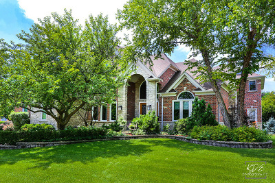Naperville Single Family Home For Sale: 4211 Delaware Court