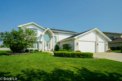 Tinley Park IL Single Family Home New: $369,900