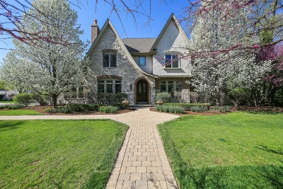 Hinsdale Single Family Home New: 645 West Chicago Avenue