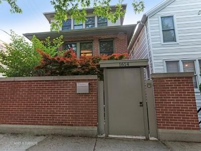 Single Family Home For Sale: 1614 North Paulina Street