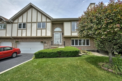 Tinley Park IL Condo/Townhouse New: $194,900
