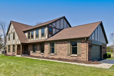 Libertyville Single Family Home For Sale: 29812 North Borde Court