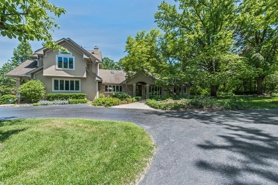 Palos Park Single Family Home New: 12345 South Wolf Road