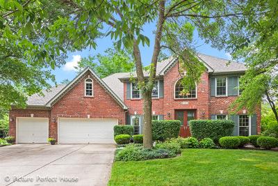 Breckenridge Estates Single Family Home New: 2507 Winter Park Court