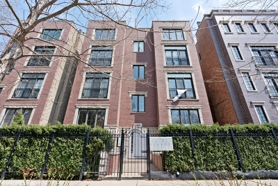 Chicago IL Condo/Townhouse New: $559,000