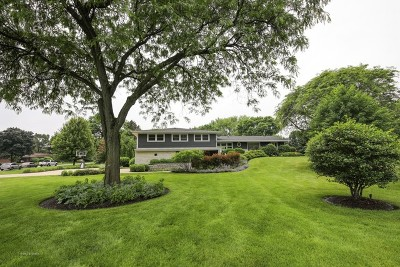 Palatine Single Family Home Contingent: 291 Park Drive
