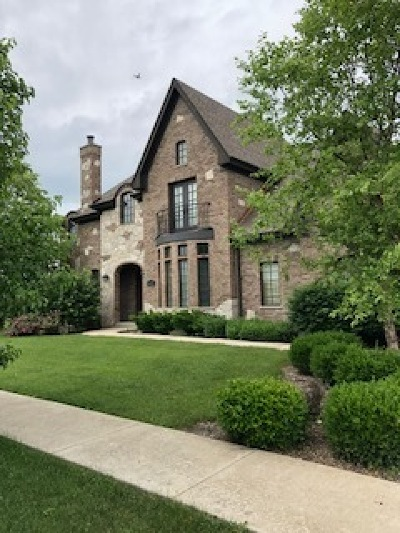 Orland Park Single Family Home For Sale: 14541 Sanctuary Drive
