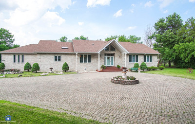 Lemont Single Family Home New: 17662 Bluff Road