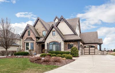 Shorewood Single Family Home New: 25538 Prairiewood Lane