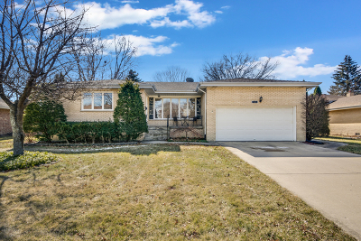 Palatine Single Family Home For Sale: 435 East Cunningham Drive