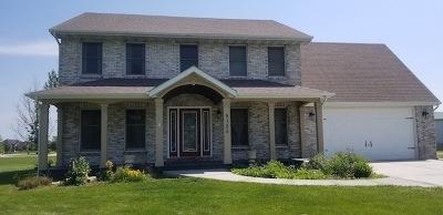 Minooka, Channahon Single Family Home For Sale: 5125 East Minooka Road