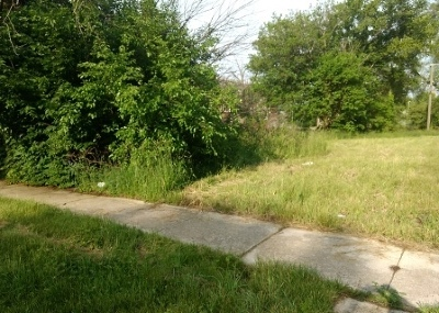 Chicago Residential Lots & Land New: 6758 South Emerald Avenue
