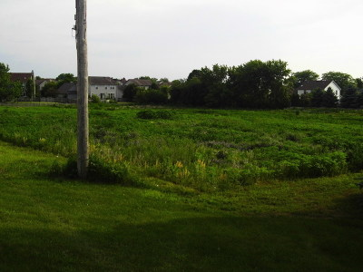 Elgin Residential Lots & Land For Sale: 9n976 Randall Road