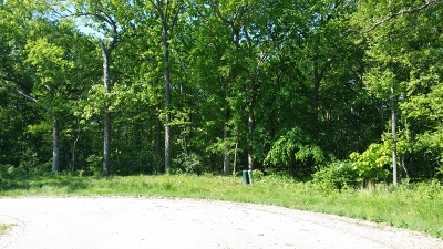 Mc Henry County Residential Lots & Land For Sale: Lot 12 Autumn Ridge Court