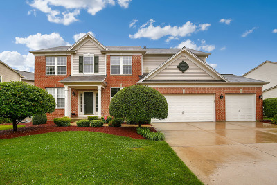 Streamwood Single Family Home For Sale: 147 Rosewood Drive