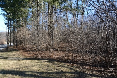 Mc Henry County Residential Lots & Land New: 3918 Carlisle Drive