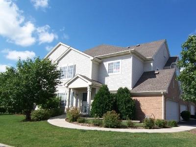 Hoffman Estates Condo/Townhouse New: 6098 Delaney Drive #53-1