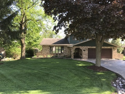 Homer Glen Single Family Home New: 15638 Janas Drive
