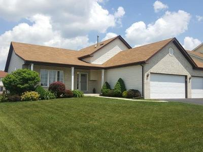 Monee Single Family Home For Sale: 4668 West Iris Lane