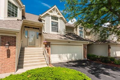 South Elgin Condo/Townhouse Contingent: 24 Ione Drive #B