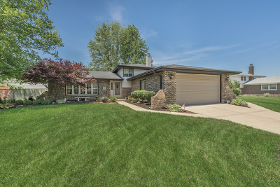 Orland Park  Single Family Home Contingent: 14200 Timothy Drive