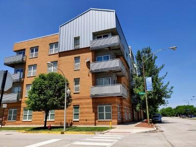 Chicago IL Condo/Townhouse New: $158,000