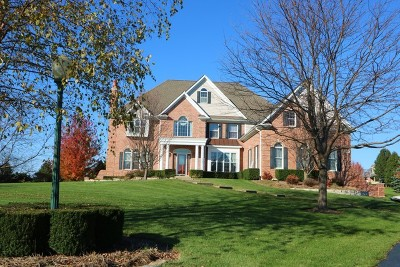 Mc Henry County Single Family Home New: 2907 Hanging Fen Court