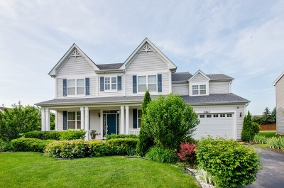 Huntley Single Family Home For Sale: 11623 Barberry Lane