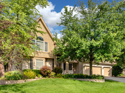Naperville Single Family Home New: 4035 Broadmoor Circle