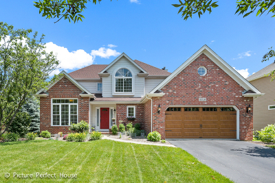 Naperville Single Family Home New: 5316 Switch Grass Lane