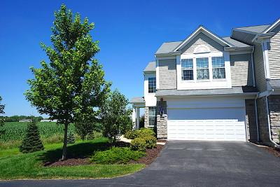 Oswego Condo/Townhouse New: 369 Devoe Drive