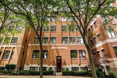 Chicago Condo/Townhouse New: 2714 North Lehmann Court #1N