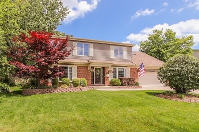 Hoffman Estates Single Family Home For Sale: 1125 Concord Lane