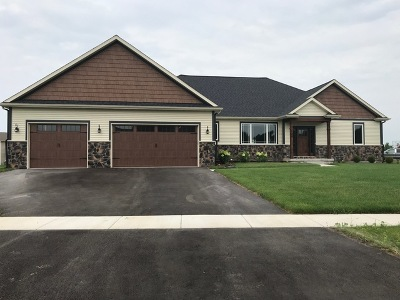 Sycamore Single Family Home For Sale: 235 Dahl Court