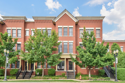 Elgin Condo/Townhouse New: 161 South Grove Avenue #107B