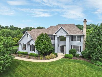 Mc Henry County Single Family Home New: 6910 Longmoor Drive
