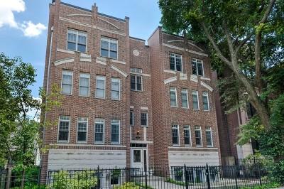 Condo/Townhouse New: 3927 North Greenview Avenue #4S