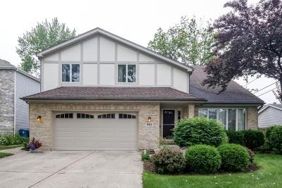 Elmhurst Single Family Home For Sale: 552 South Sunnyside Avenue