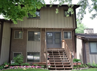 Roselle Condo/Townhouse New: 637 Forum Drive