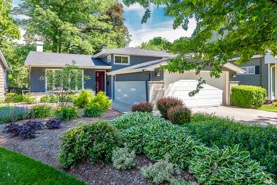 Glen Ellyn Single Family Home For Sale: 294 Hill Avenue