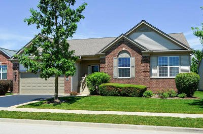 Elgin IL Single Family Home New: $378,000