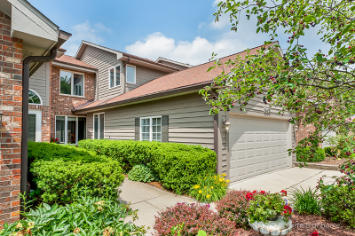 Glen Ellyn Condo/Townhouse For Sale: 849 Saddlewood Drive