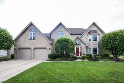 Darien Single Family Home For Sale: 7517 Norman Drive