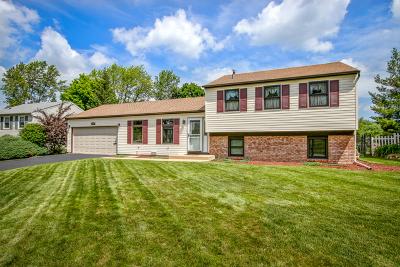 Schaumburg Single Family Home New: 1220 Allison Lane